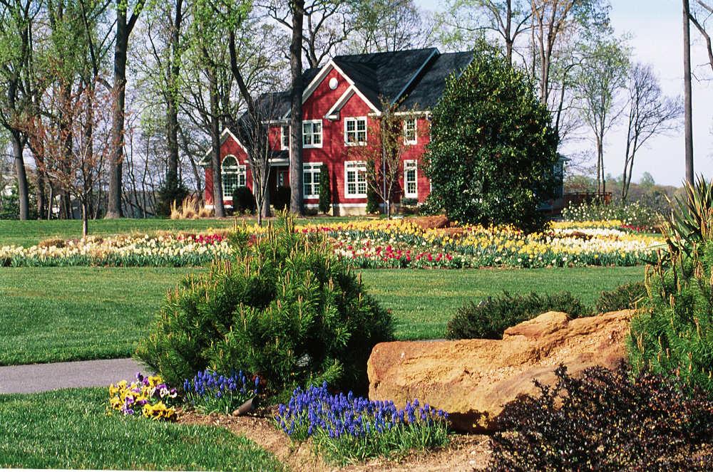 Landscape Plantings